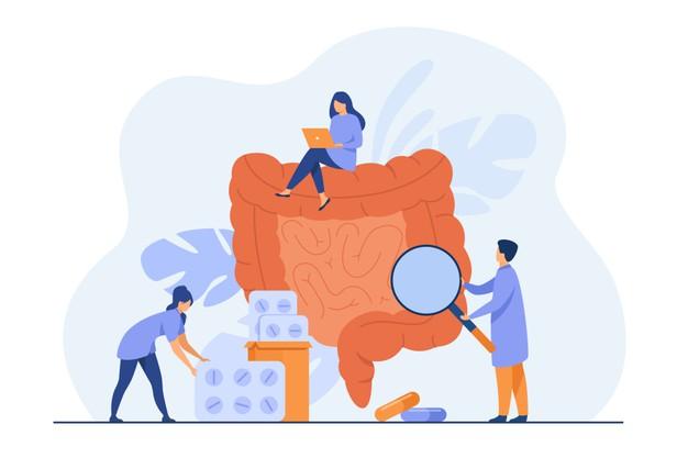 Ilustração de três médicos examinando o sistema digestivo.